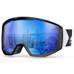 Ski / Snowboard Goggles